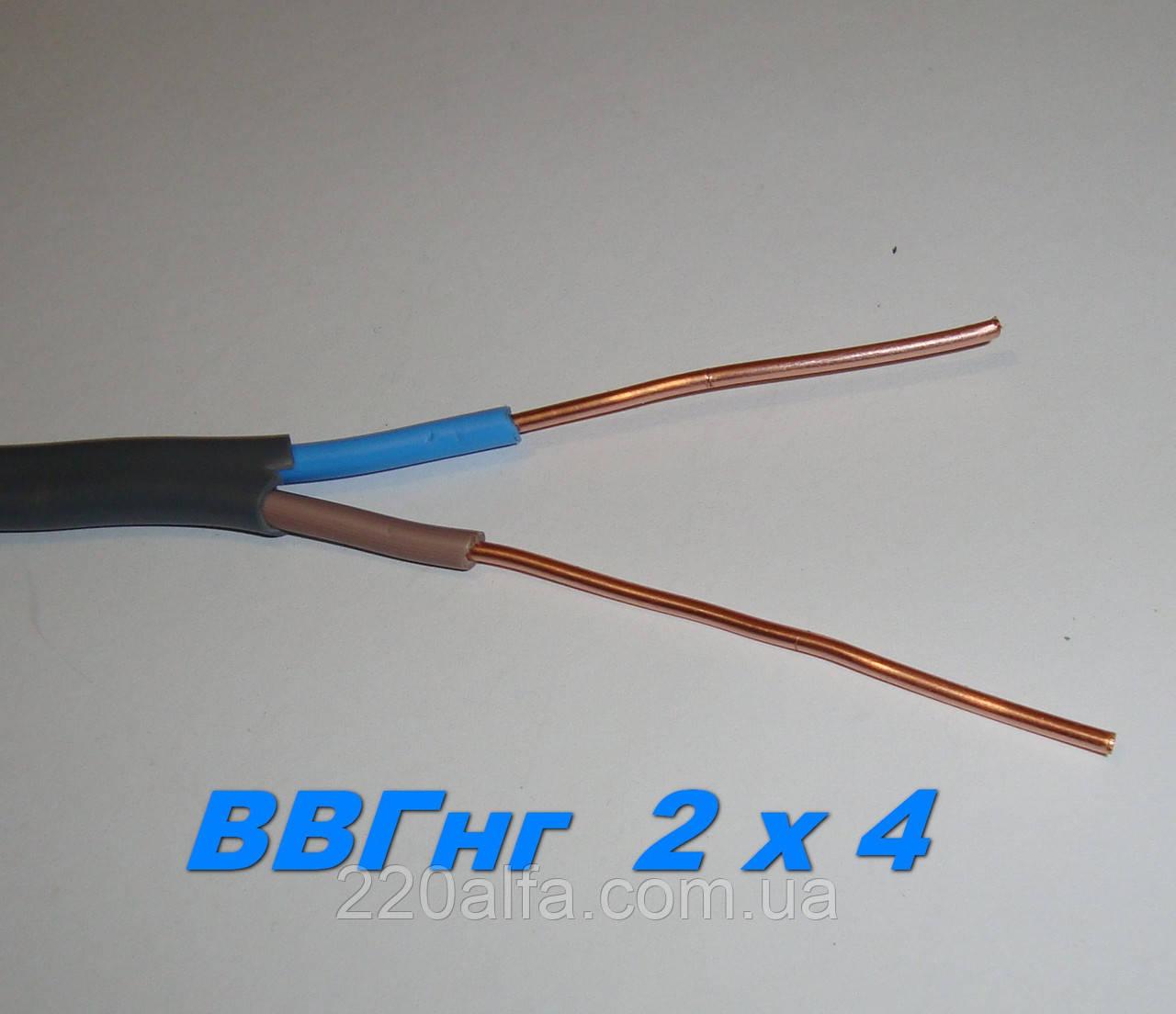 Силовой медный кабель провод ВВГнг 2х 4 нгд полноценный.