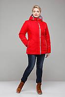 Куртка женская демисезонная большие размеры,М-338 красная