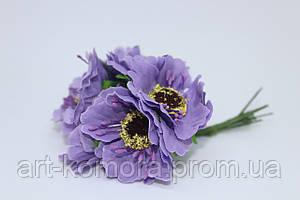 Мак фиолетовый, 6 шт. в наборе