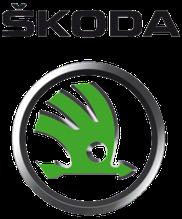 Вії на фари Skoda