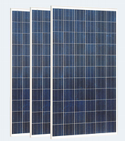 Солнечная панель Perlight Solar PLM-260P-60, 260 Вт, Poly
