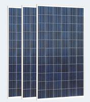 Солнечная панель Perlight Solar 300 Вт, Poly, фото 1