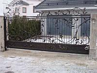 Ворота кованые Трускавец, Трускавець плюс