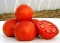 Семена томата Платинум F1 1000 семян детерминантный