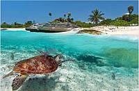 Кафель панно Море черепаха, плитка 20х30см.