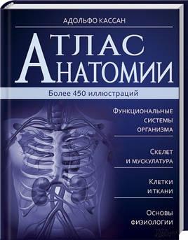 Атлас анатомии