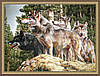 Картина гобеленовая в багетной раме Волки 400х600мм №G309