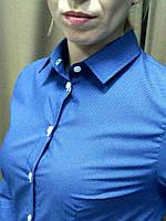 Синяя блуза в мелкий белый горошек