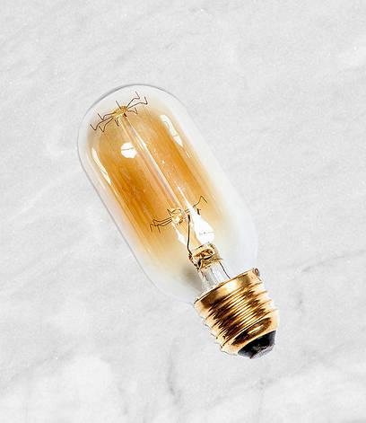 Лампа Эдисона Т45 40W, фото 2
