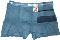 Трусы брифы Jujube №1 размер XL,2XL,4XL