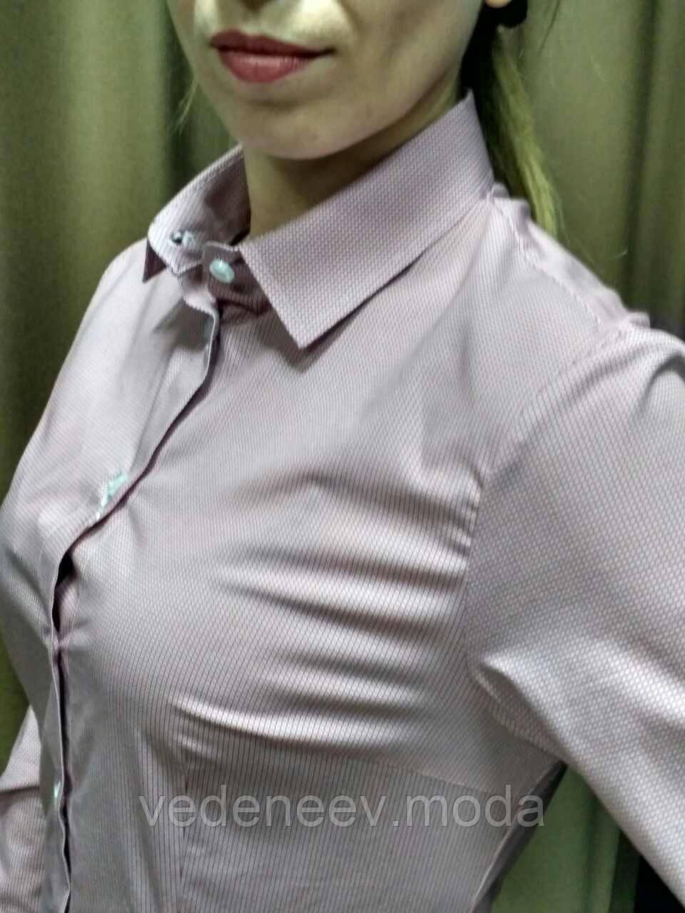 Блуза  в мелкий розовый принт