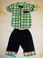 Комплект (рубашка, шорты, бабочка) 24, 28,
