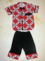 Комплект (рубашка, шорты, бабочка) 26, 30