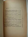 """С.Бегей """"Проміжні посіви кормових культур"""", фото 8"""