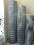Сітка зварна оцинкована, Осередок 50х50 мм, Діаметр 1,8 мм, фото 2