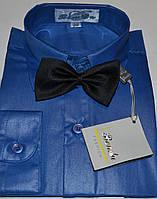 Детская синяя (васильковая) рубашка с бабочкой BENDU (размеры 25,26.27.28,29.30,31)