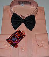 Детская персиковая рубашка с бабочкой BENDU (размер 25.26.27.28.29,30.31)