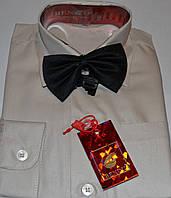 Детская бежевая рубашка с бабочкой BENDU (размеры 24,25,26,27,28,29)