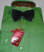 Детская зеленая рубашка с бабочкой BENDU (размеры 24,25,26,27,28,30)