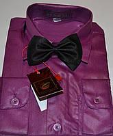 Детская фиолетовая рубашка с бабочкой BENDU (размеры 25,26,27,28,29,30,31)