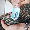 Инструмент для чистки чешуи рыбы
