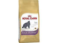Royal Canin (Роял Канин) Сухой корм для британских короткошерстных кошек British Shorthair 400гр (от 1года)