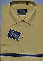 Сорочка PAN FILO класика (розміри від 38 до 45)