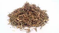 Фиалка трехцветная трава 100 грамм (душистая, полевая)