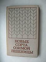"""Пруцкова М., Уханова О. """"Новые сорта озимой пшеницы"""""""