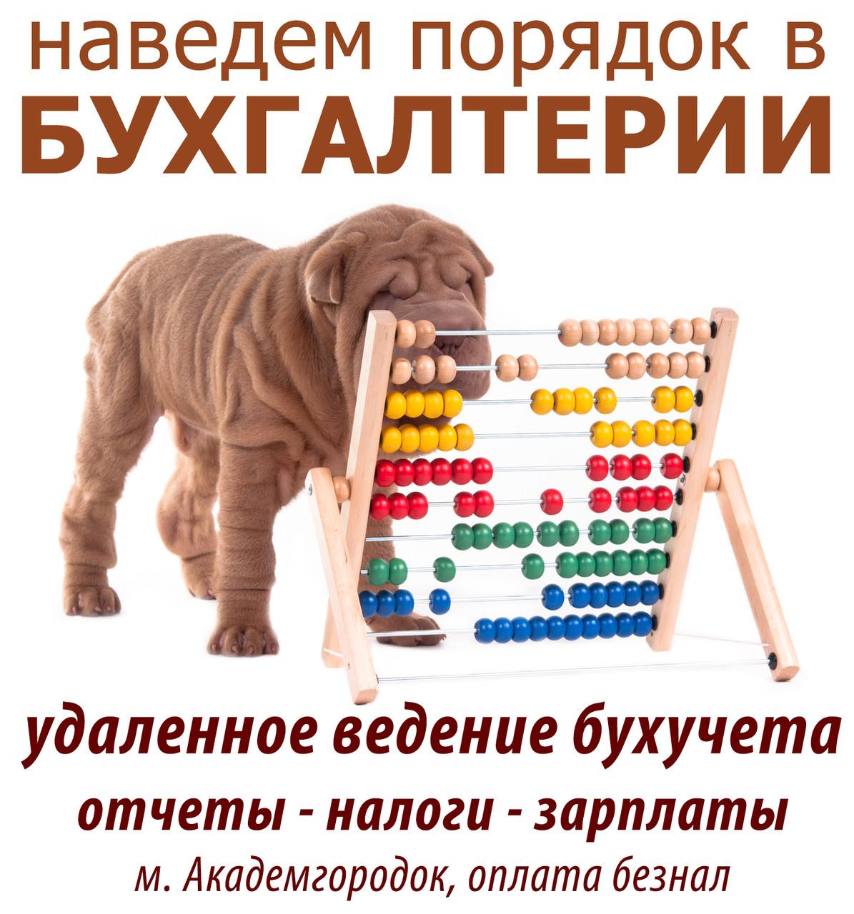 Ведение бухгалтерского учета, с оплатой по б/н - Бухгалтерская фирма БУХЗВИТ в Киеве
