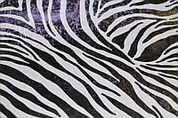 Самоклейка, GEKKOFIX, зебра, черный, белый, витраж для стекол, 12620, 45 cm