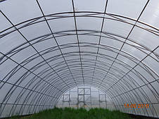 """Фермерські теплиці під плівку """"Урожай - 8м"""""""