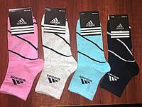 Носки женские Adidas р.35-41 (101)