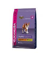 EUKANUBA Puppy & junior medium 15 kg
