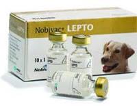 Вакцина Нобивак Nobi-Vac Lepto Intervet (Нидерланды)