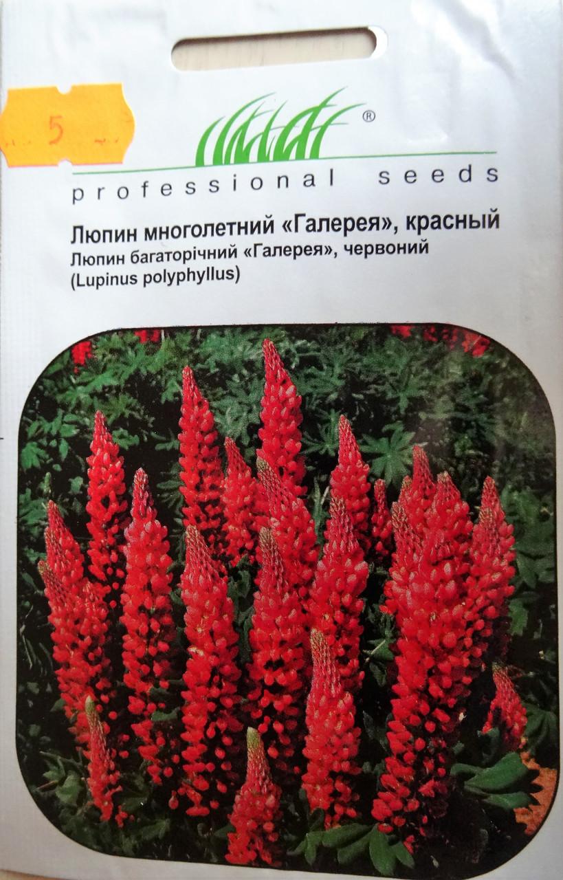 Семена цветов сорт Люпин многолетний Галлерея красный