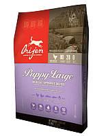 сухий корм для собак ORIJEN Puppy Large 6 кг