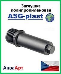 Заглушка резьбовая ппр 1/2 длинная ASG-Plast (Чехия)