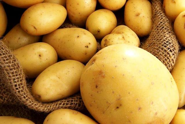 Украина стала одним из мировых производителей картофеля