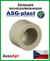 Заглушка ппр 63 ASG-Plast (Чехия)