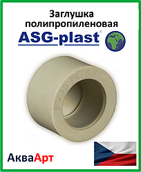 Заглушка ппр 75 ASG-Plast (Чехия)