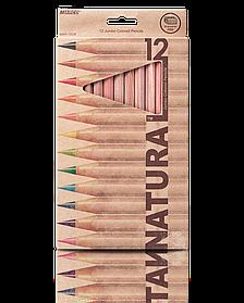 """Олівці кольорові 12 кольорів """"MARCO"""" Natural Jumbo 6400-12CB"""