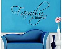 "Наклейки на потолок ""Family"" (063)"
