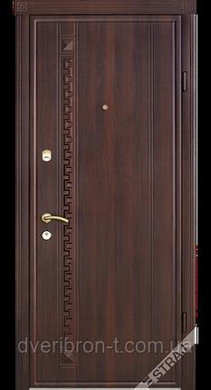 Входная дверь Страж standart-plus 49, фото 2