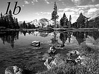 Природа на фоне гор