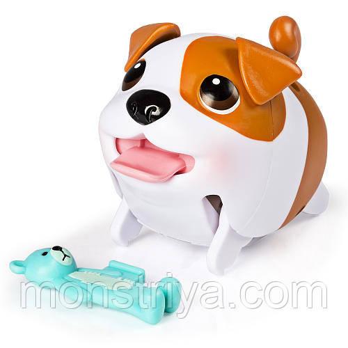Упитанные собачки Собачка Chubby Puppies - Бульдог