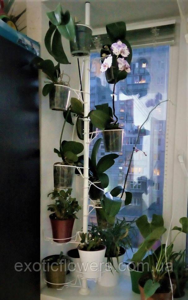 """Підставка для квітів на підвіконня """"Розпірка"""""""