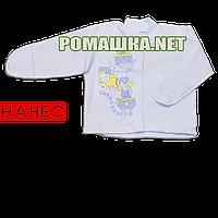Детская кофточка р. 56 с начесом и царапками демисезонная ткань ФУТЕР 100% хлопок ТМ Алекс 3222 Голубой2