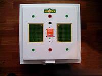 Инкубатор для яиц Квочка МИ-30/IС с ручным переворотом