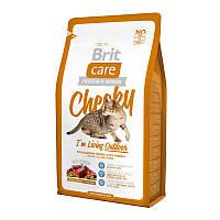 Brit Care Cat Cheeky с олениной и рисом для кошек, живущих на улице, 7кг